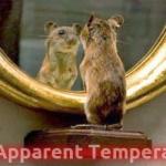 reflected apparent temperature